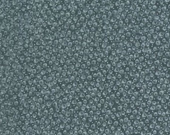 RJR Fabrics Time With Friends 2283 03 Slate Circles Yardage by Lynette Anderson