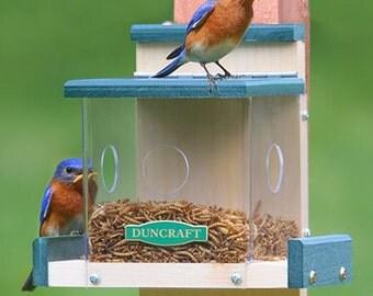 Clearview Bluebird Feeder