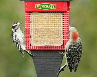 Three Woodpecker Suet Wrap Feeder