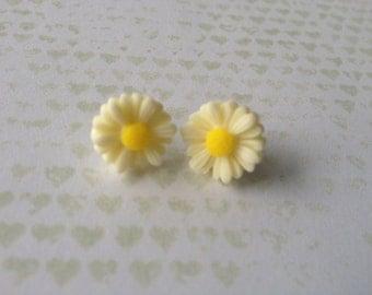Daisy Earrings - 1x pair of  resin flower earrings  - 10cm Plastic daisy set on surgical steel posts