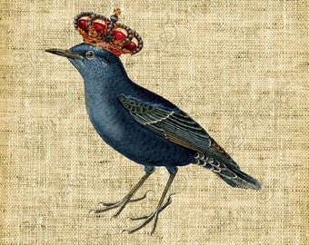 Vintage Image/Black Bird with Crown/Crow/Clipart/Decoupage/Crafts - INSTANT DOWNLOAD