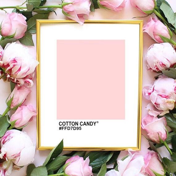 Rosa farbe dekor pinterest beispielraum zitieren von angiesprints