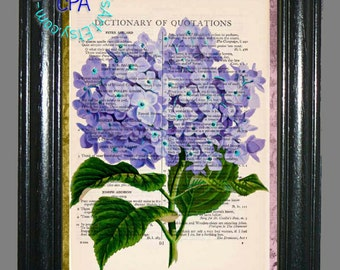 Purple Hydrandeas Flowers Art -  Beautifully Upcycled Vintage Dictionary Page Book Art Print