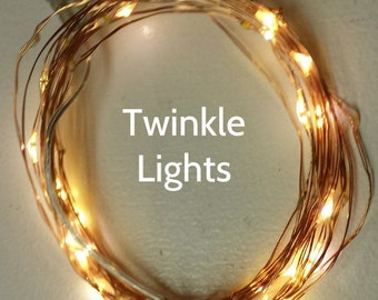 50 Warm White Twinkle Fairy Lights on 16-ft copper or silver wire.  Great twinkle effect as lights flash independently.
