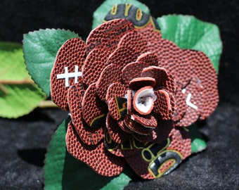 Football Rose in Full Bloom