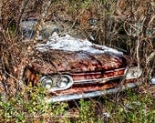 Red 1964 Chevy Corvair in the Woods Photograph