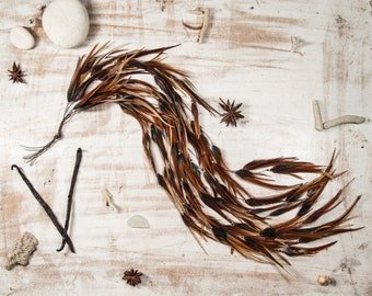 Cinnamon Pixie Natural Feather Hair Extensions