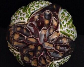 Rattle 6 - seed pod