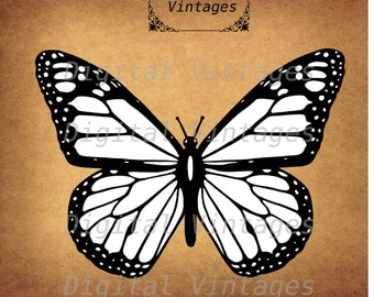 Butterfly Monarch Insect Nature Vector Illustration Vintage  Antique Digital Image Graphic Download Printable Graphic Clip Art  HQ 300dpi