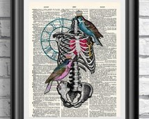 Blue and Pink Birds Anatomical Print, Tattoo print, Wall decor, Wall hangings, Dictionary print, Book page art print, Gothic Print Skull art