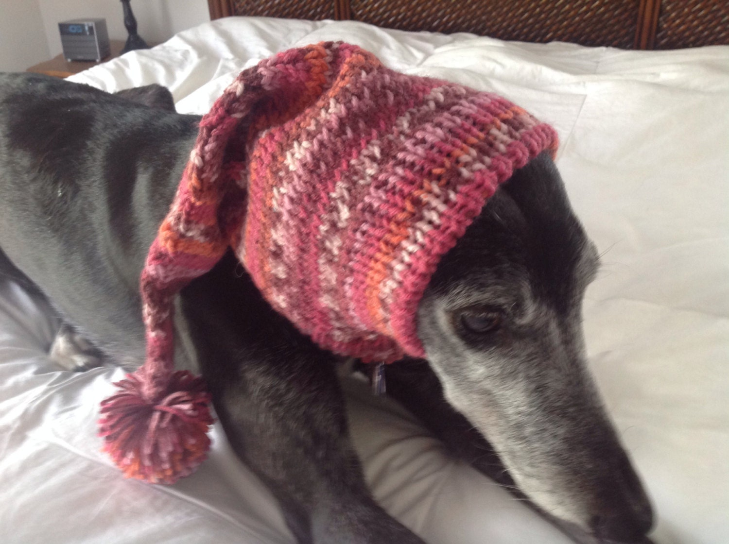 Pointed hat with snood for greyhound fair isle pattern rose garden gallery photo gallery photo gallery photo bankloansurffo Images