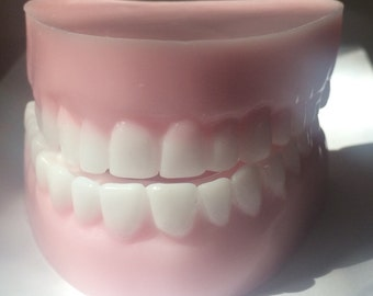 Denture Soap, Teeth, Handmade Soap, Novelty Soap, Dentist