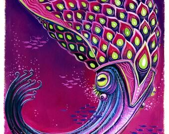 Ancient Squid