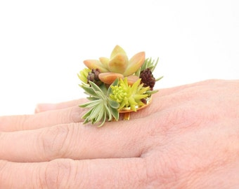 Chartreuse Succulent Botanical Ring