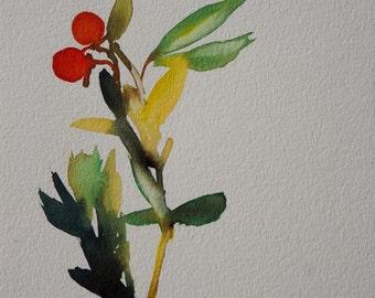 Original Watercolour: apples of love.