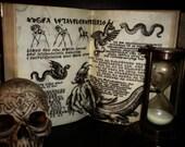 De Vermis Mysteriis - The...