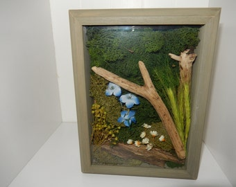 Nature Shadow Box, Nature Decor, Home Decor