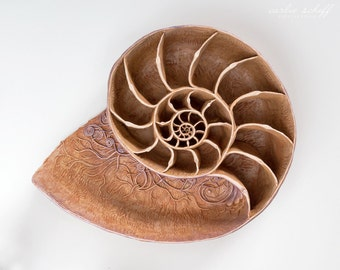 Nautilus Spiral Shell Sculpture - Specialty Artwork - Ready to Ship