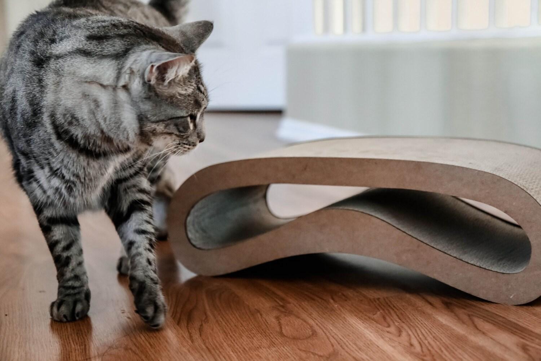 Petshopgarden the curve shape cat scratcher for Curved cat scratcher