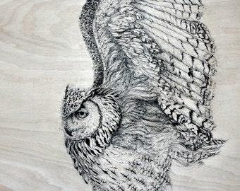 Owl. Good quality art print. A3 size.