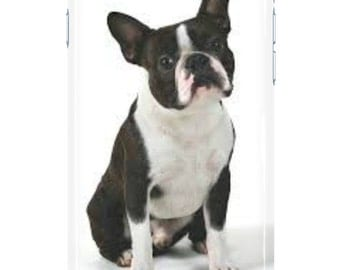 Boston Terrier Phone Case