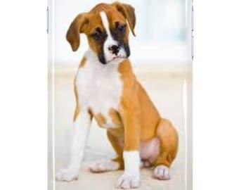 Boxer Puppy Case
