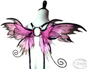Penelope No.10 - Small Fairy Wings in Hot Pink and Black