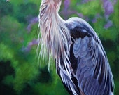 """Great Blue Heron signed and matted print from a painting by Eden Bachelder, 11"""" x 14"""" matted size"""