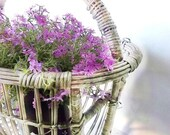 Shabby French Farmhouse ~Wicker Basket Stand . Cottage ~Garden~ Patio ~Front Porch ~Summer Living