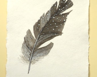 Original watercolour guinea fowl spotty feather study