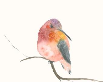 Original Watercolor Artwork Pink Hummingbird
