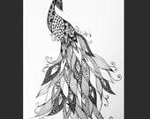 Zen Peacock - 8x10 print