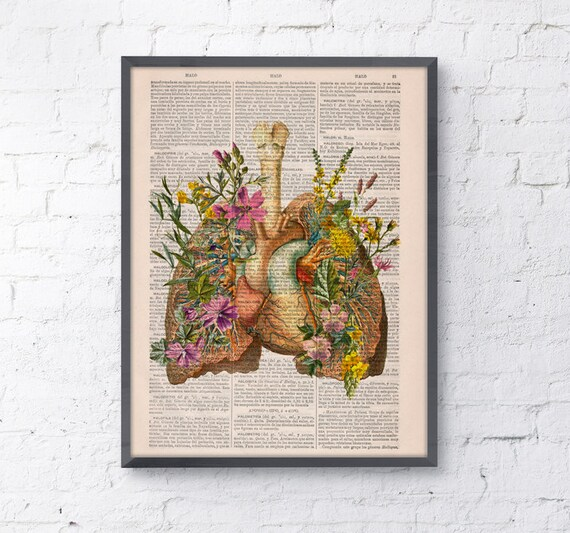 Spring Sale Pink Flowery Lungs and heart human Anatomy Print, love art, human anatomy, science & anatomy art, wall decor BPSK099
