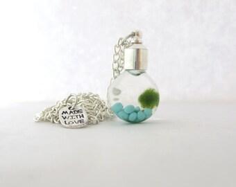 Living Terrarium Necklace - Marimo Moss Terrarium - Miniature Moss Ball - Aquatic Pet - Live Moss