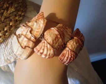 Wire wrapped shell bracelet, free form style, sealed, adjustable.