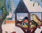 1961 CHRISTMAS ROBIN BIRDS Print Ideal for Framing