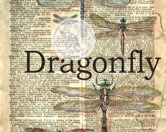 PRINT:  Dragonflies Mixed Media Drawing on Antique Dicionary Page