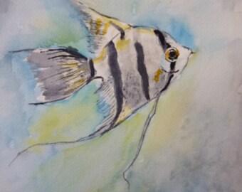 Watercolor of Angel Fish