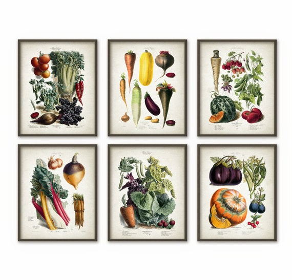 Vegetables kitchen wall art print set of 6 antique botanical for Kitchen wall decor sets