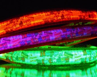 Happy Birthday party dog collar w/ LED lights up in dark; neon pink, orange, yellow, green, blue ...