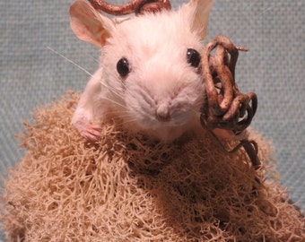 Taxidermy Mouse Sculpture: Imagine No. 8