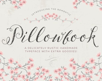 Script font: Pillowbook font PLUS extras / modern calligraphy font / wedding font elegant typeface / blog font / photography / hand drawn