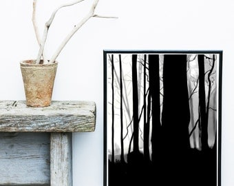Abstract Photography, Printable Art, Forest Photo, Tree Photography, Digital download, Minimalist Poster, Atmospheric, Wall Art, Wall Decor,