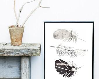 Feather Print, Printable Art, Feather Art, Scandinavian Art, Feather Wall Art,  Wall Decor, digital download, Poster