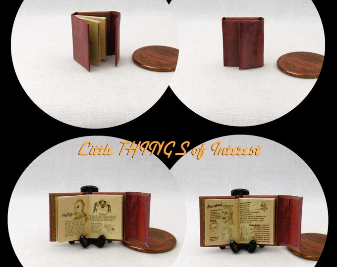 1:24 Scale BOOK Of WESEN LORE Miniature Book Dollhouse Illustrated Book
