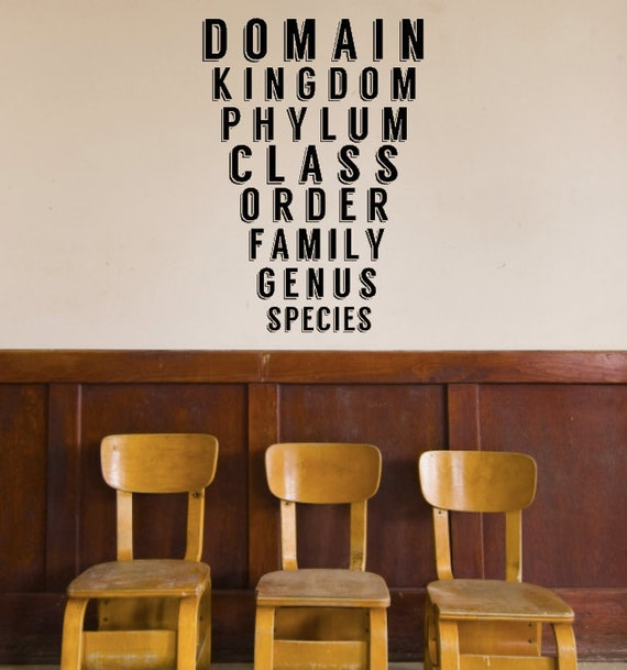 Science class taxonomy decal biology classroom decal - Classroom wall decor ...