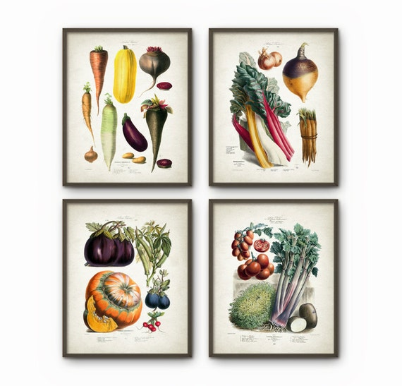 Kitchen Art Vegetables Print Botanicals Kitchen Art: Vegetables Kitchen Wall Art Print Set Of 4 Antique Botanical