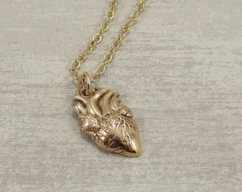Anatomical Heart Necklace, Bronze Anatomical Heart Charm on a Gold Cable Chain
