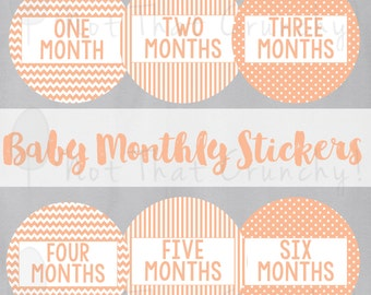 Baby Monthly Growth Stickers - Milestone Bodysuit Stickers - Orange Photo Stickers - Baby Orange Baby Month Stickers - Baby Shower Gift