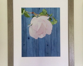 Print, White Rose with Fence Watercolor